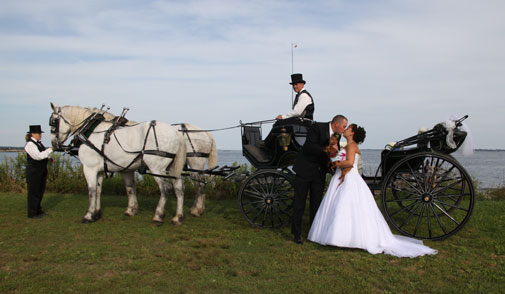 black wedding carriage  vis-a-vis