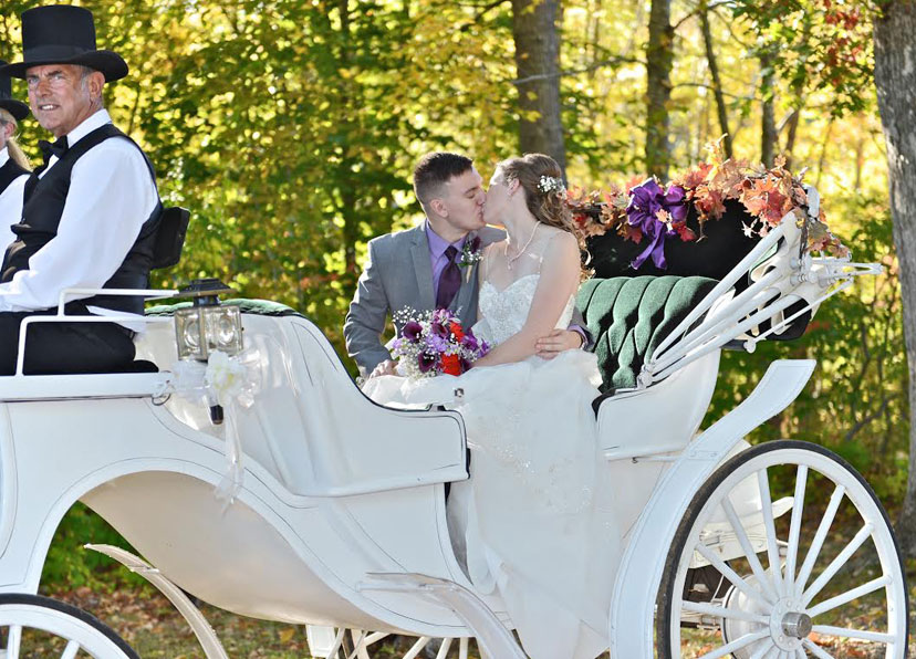wedding carriage bride, groom